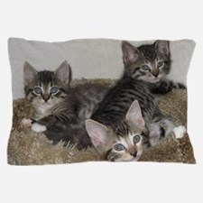 Cute Kittens Pillow Case