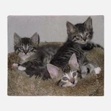 Cute Kittens Throw Blanket