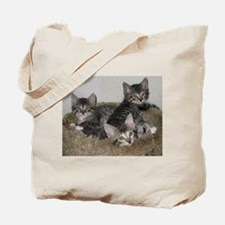 Cute Kittens Tote Bag