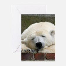 Polar bear 003 Greeting Cards