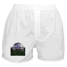 Under The Dome Boxer Shorts