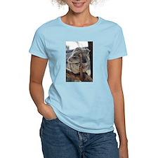 Cuddly Koala T-Shirt