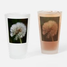 Cute Dandelion seeds blowing in the wind Drinking Glass