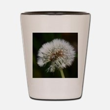 Unique Dandelion seeds blowing in the wind Shot Glass