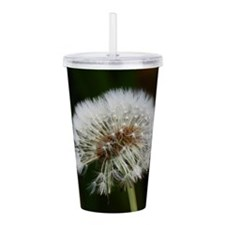 Cute Dandelion seeds blowing in the wind Acrylic Double-wall Tumbler
