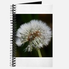 Cool Wishes dandelion Journal