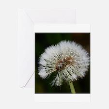 Dandelion Greeting Cards