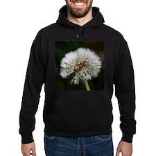 Cute Dandelion seeds blowing in the wind Hoodie