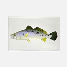 Spotted Seatrout 2 Magnets