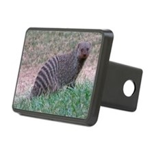 a mongoose Hitch Cover