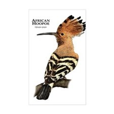 African Hoopoe Decal