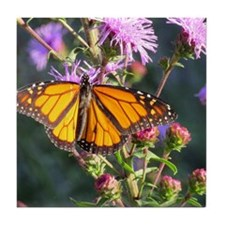 Monarch Butterfly on Purple Milkweed Tile Coaster