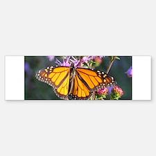 Monarch Butterfly on Purple Milkweed Bumper Sticke