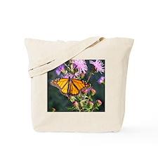 Monarch Butterfly on Purple Milkweed Tote Bag