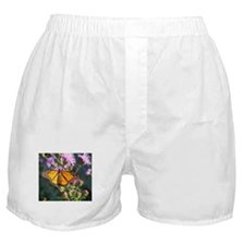 Monarch Butterfly on Purple Milkweed Boxer Shorts