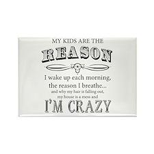Reason I'm Crazy Magnets