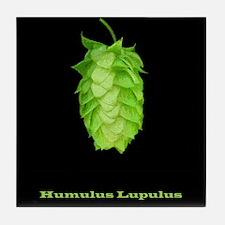 Humulus Lupulus Hop's Real Name! Tile Coaster