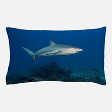 Caribbean Reef Sharks (Carcharhinus pe Pillow Case