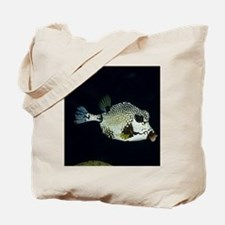 Smooth Trunkfish (Lactophrys triqueter),  Tote Bag