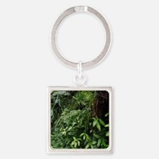 Tropical Forest 07 Keychains
