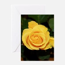 Rose yellow 001 Greeting Cards