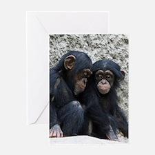 Chimpanzee002 Greeting Cards
