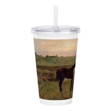 Unique Vintage horses Acrylic Double-wall Tumbler