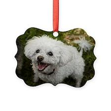 Cute Sophie Ornament