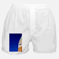 Designed by Coducci circa 1496k's Squ Boxer Shorts