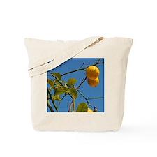 Europe, Italy, Sicily, Taormina. Local le Tote Bag