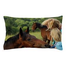 Enniskerry. Horse encounter near Power Pillow Case