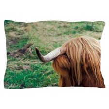 Fort William. Shaggy Highland cowds, F Pillow Case