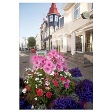 Pedestrian street decorated with flower displays a Framed Print
