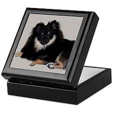 Sable Pomeranian Keepsake Box