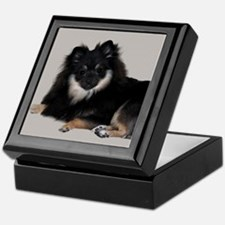 Sable Pomeranian Keepsake Box
