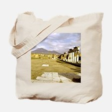 Roman ruins at Pompeii. The Forum and Mt  Tote Bag
