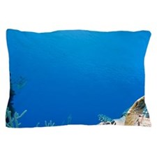 Underwater view of Hawksbill Turtle (E Pillow Case