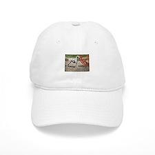 Dalmatian Art Baseball Cap