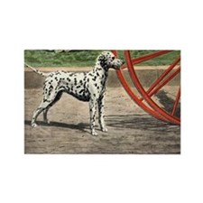 Dalmatian Art Rectangle Magnet