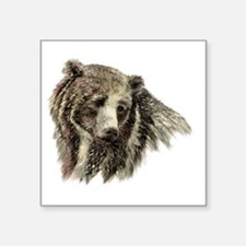 Watercolor Grizzly Bear Animal Nature Art Sticker
