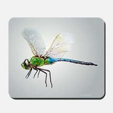 Dragonfly 3 Mousepad