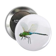 Dragonfly 3 Button