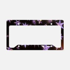 Sparkling Stars License Plate Holder