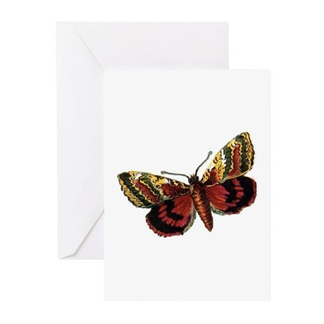Butterfly 12 Greeting Cards (Pk of 10)