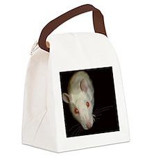 Unique Fancy rats Canvas Lunch Bag