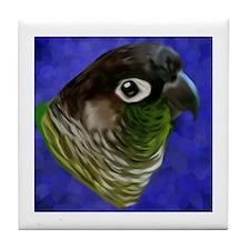 Funny Green cheeked conure Tile Coaster
