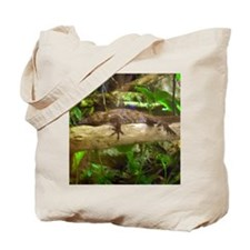 cuban false chameleon Tote Bag