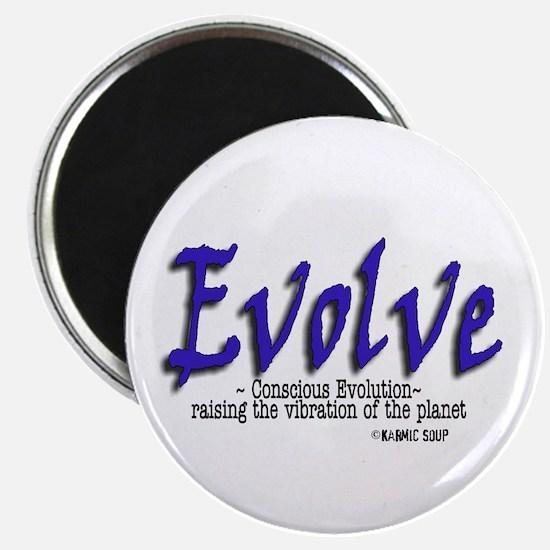 EVOLVE magnet