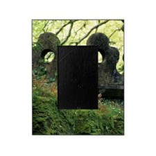 Sintra. Moss and ferns grow over cre Picture Frame