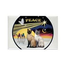 Cute Blue point siamese cat Rectangle Magnet